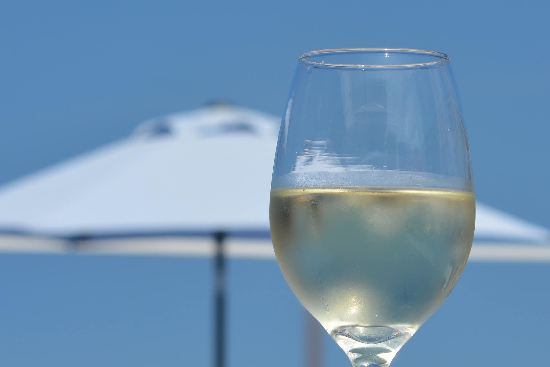 vinos para el verano